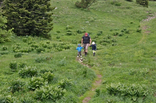 little hikers walking hand in hand with papa